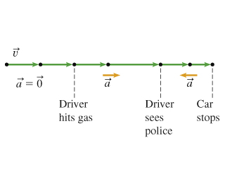 The figure shows a motion diagram for a car. Before the driver hits the gas pedal, the diagram shows 0 acceleration and equal segments. Before the driver sees the police, the diagram shows a forward acceleration and lengthening segments. Before the car stops, the diagram shows a backward acceleration and shortening segments.